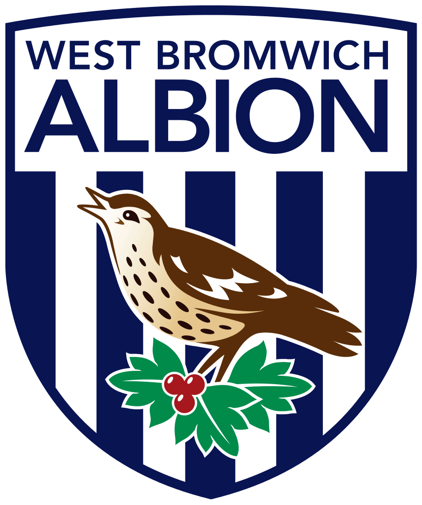 Chinese take over English premier league club West Brom